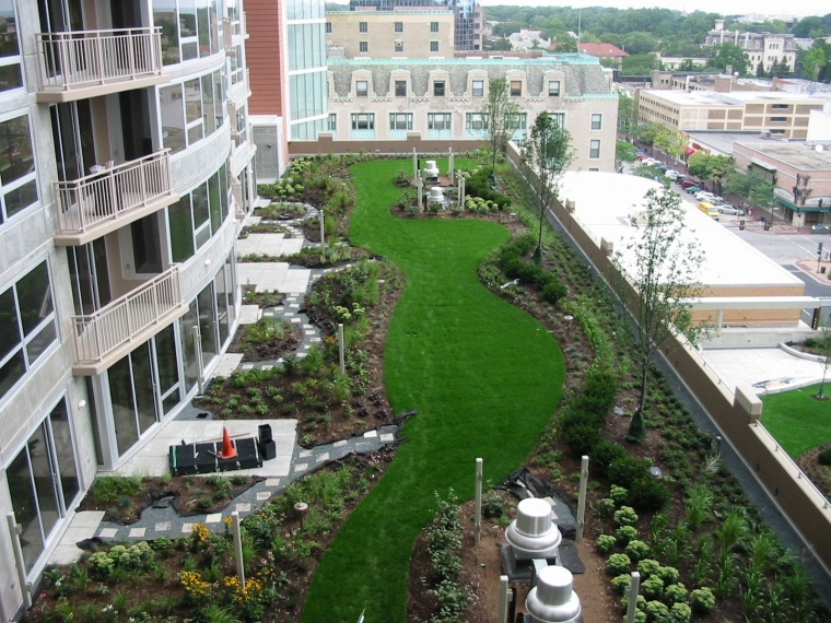 Sherman Plaza green roof, Evanston, IL (American Hydrotech)