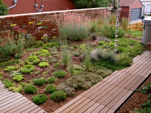 Denver Residential Green Roof. Art of the Land design with consultation with Andy Creath and Mark Fusco